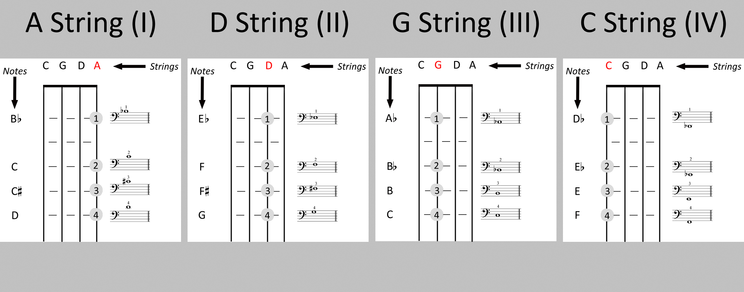 Detailed Diagrams For Extended First Position The Cello Companion